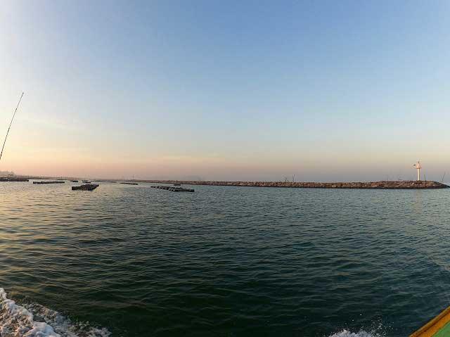 アンシラー沖堤防 タイ チヌ 釣り