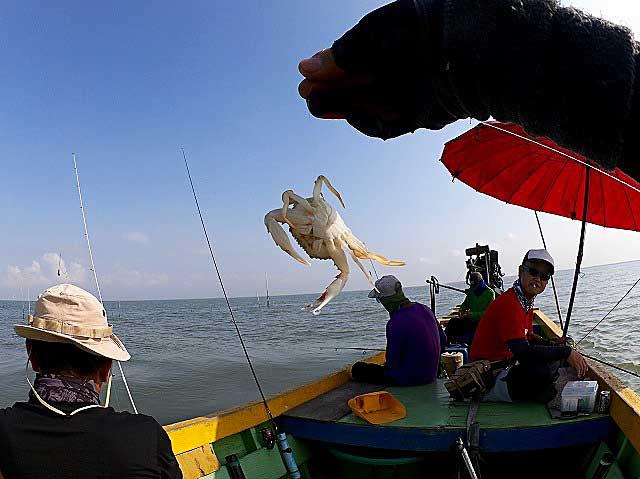 カニ バンサイ 釣り