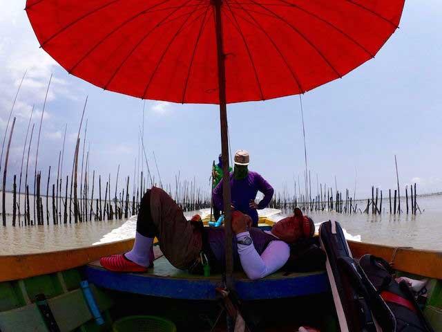 タイランド チヌ 釣り