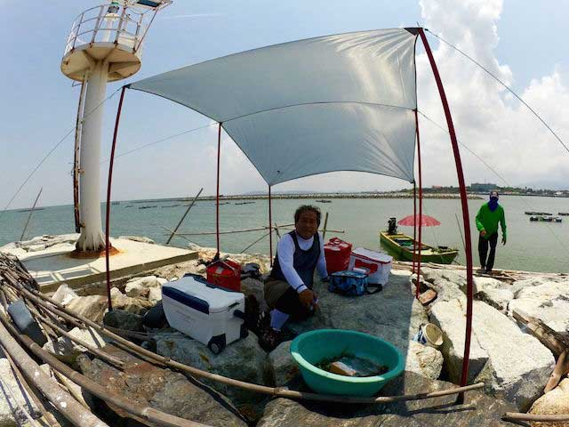 タイランド チヌ 釣り 波止上